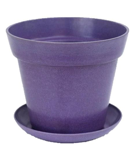 orchid tree purple biodegradable decorative planter with
