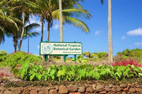 National Tropical Botanical Garden Hawaii Com National Tropical Botanical Gardens