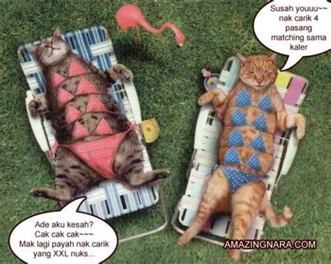 Mainan Kucing Cat It Senses Catit Desain Senses Scratch Pad minda cikgupj