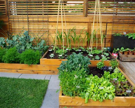 Garden Accessories Nz Unique Small Kitchen Garden Small Vegetable Garden Ideas