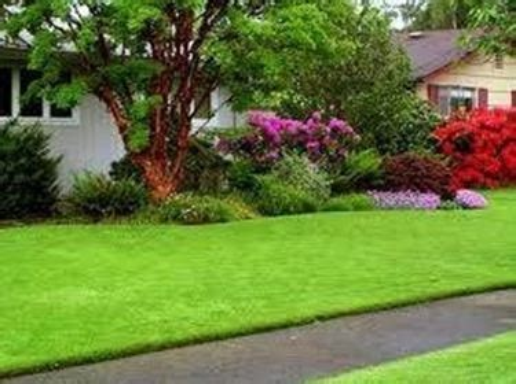 creare un bel giardino creare un bel giardino crea giardino