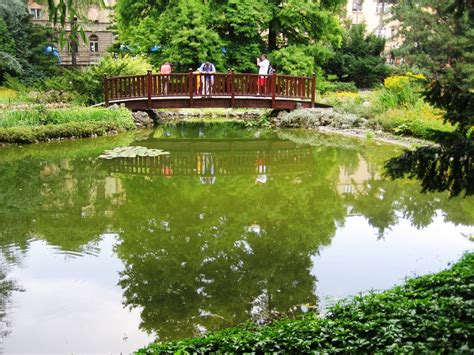 Botanical Gardens In Ta Ta Botanical Garden Ta Botanic Gardens Trail Kenny Chen Han Teng 2c 07 Paypay Sorbus Commixta
