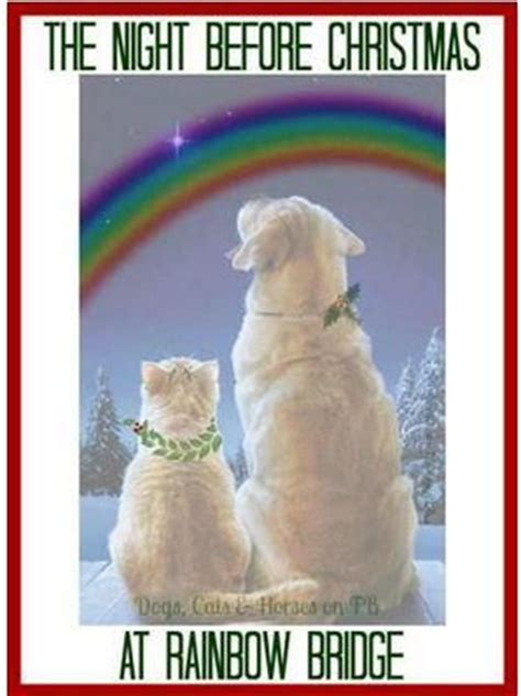 twas the before as told by the cat books 78 best ideas about rainbow bridge poem on