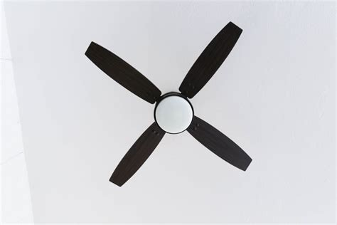 choosing a ceiling fan choosing a ceiling fan color boatylicious org