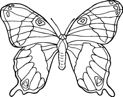 Coloring Pages Of Flowers And Butterflies butterflies coloring pages printable coloring pages