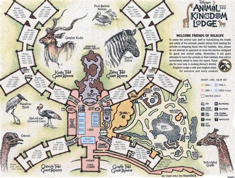 map of animal kingdom disney s animal kingdom lodge