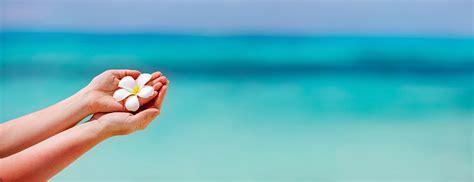 Zen Homes organisez vos vacances bien 234 tre pour l 233 t 233