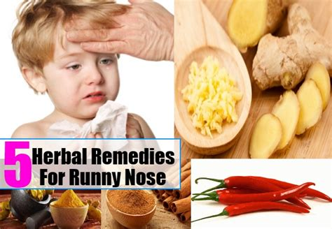 runny nose herbal remedies treatments cure