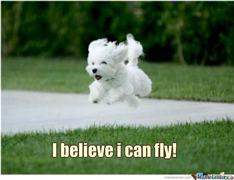 I Believe I Can Fly Meme - i believe i can fly by jonahwahl meme center