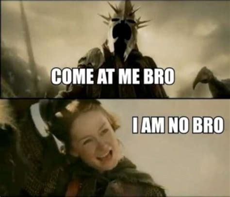 Lotr Memes - funny lord of the rings 22 pics