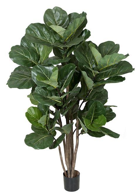 artificial fiddle leaf tree wholesale fiddle leaf