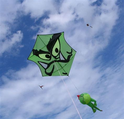 kite design indonesia 471 best images about go fly a kite on pinterest