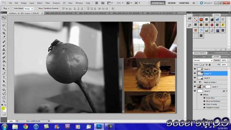 tutorial photoshop cs5 base adobe photoshop cs5 tutorial basic editing youtube
