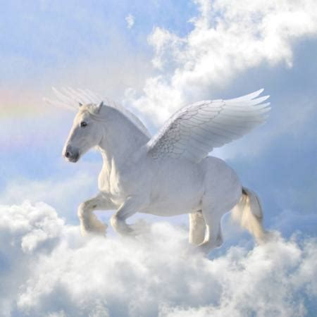 pixwords  image  horse clouds fly wings viktoria
