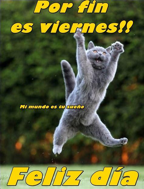 imagenes de viernes mamonas imagenes de animales graciosos con frases lindas de feliz