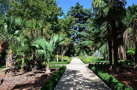 Botanical Gardens Madrid Botanical Gardens Madrid Royal Botanical Garden Madrid Potager Sandie S The Beaten Path