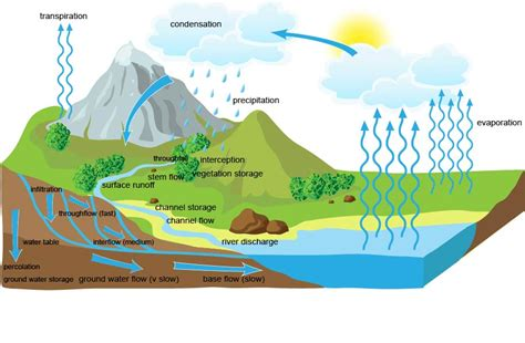 drainage basin system diagram pin define water cycle with a labeled diagram on