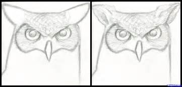 Step 5 how to draw a great horned owl