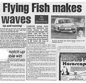 'Fish' Pun Headlines  Mark Fish Motorsport