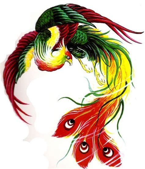 tattoo burung phoenix 17 best images about bird phoenix peacock tattoo concept