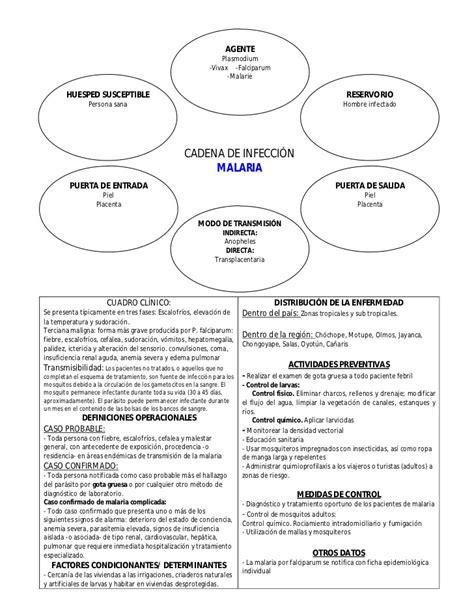 cadena epidemiologica tetanos cadenas epidemiol 243 gicas de principales enfermedades