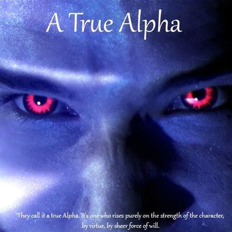 alpha definition a true alpha definition wolf