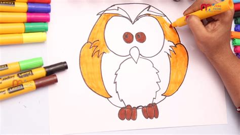 owl colors images of owls to color owl drawing for how draw and