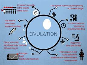 ovulation discharge color light brown spotting 3 types of causes all about