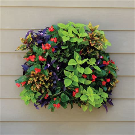Living Wall Planters by Living Wall Planter Home Decorating Ideas