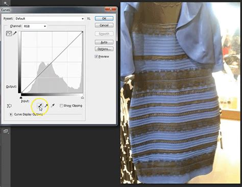 would you pay 163 540 for roman originals thedress daily