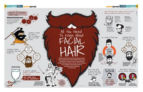 gk information all you need to know about earthquakes all you need to know about facial hair infographic facts