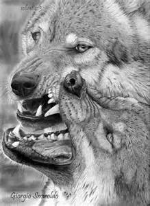 Realistic Pencil Animal Drawings Wolf