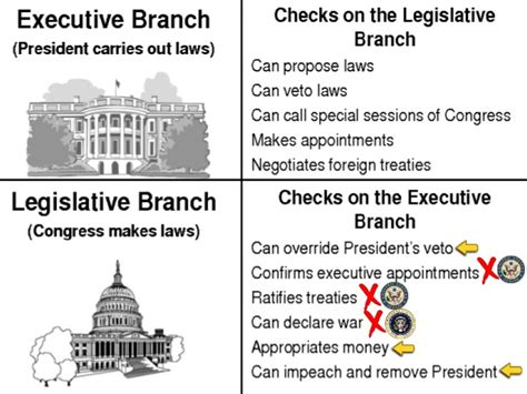 Executive Background Check 3 Checks On The Executive Branch