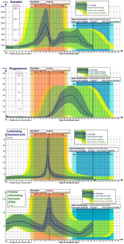 Calendario Hormonal File Hormones Estradiol Progesterone Lh And Fsh During