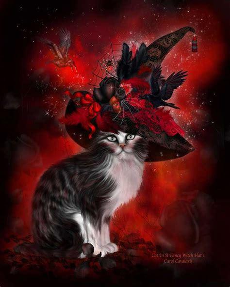 fantasy halloween horses cat   fancy witch hat   holidays  animals pinterest