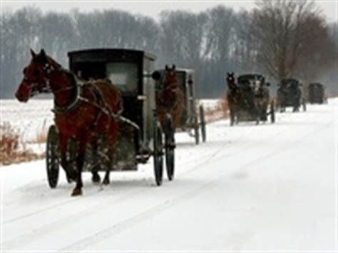 91 best amish mennonite and german baptist images on