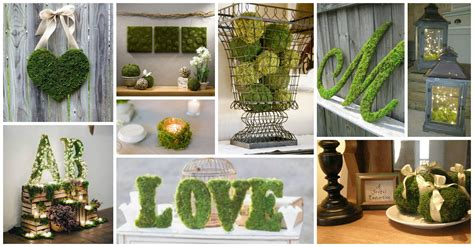 mind blowing moss covered decor ideas