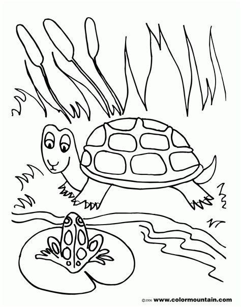 free coloring pages pond animals free coloring pages of a frog in a pond coloring home