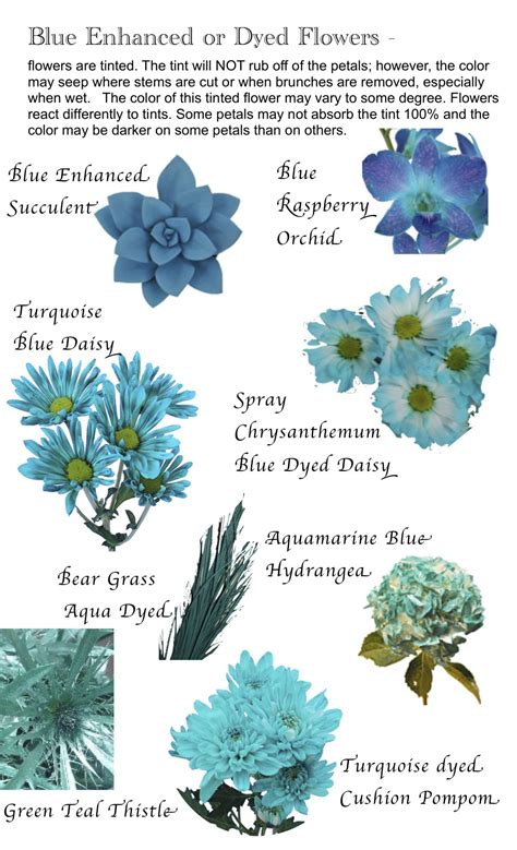 flowers by color flower names by color flowers blue flower names