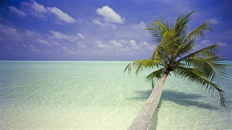 imagenes de paisajes dibujados playa fondos de pantalla paisaje 5 20 1366x768 fondos
