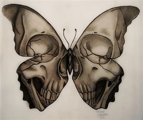 skull butterfly tattoo medusa illustration skull butterfly design