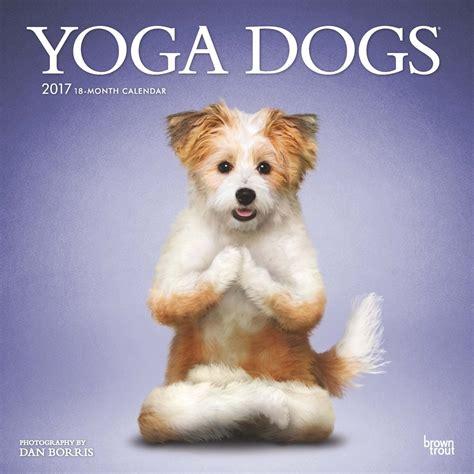Calendar Dogs Dogs 2017 Wall Calendar 9781465056627 Calendars