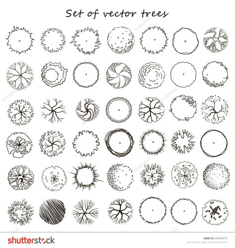 architectural drawing stock vectors vector clip set of graphic trees top view