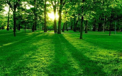 nature backgrounds nature landscape green grass wallpapers hd desktop