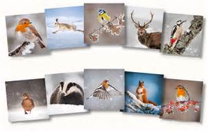 cards and calendars the wildlife trusts