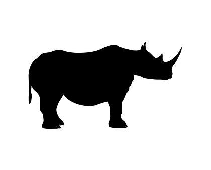 Logo Binatang Badak by Binatang Kartun Gambar Gambar Gratis Di Pixabay