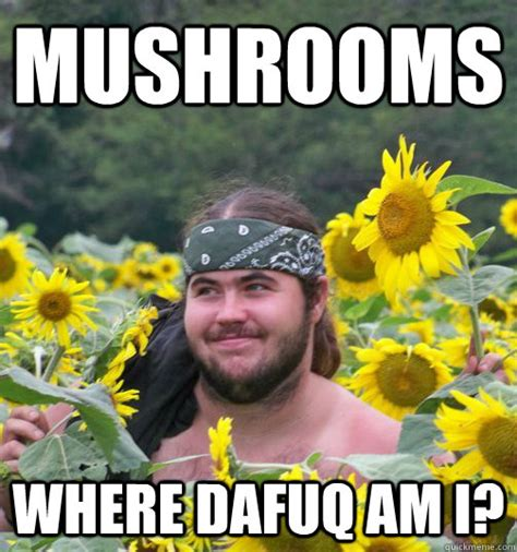 Psychedelic Meme - mushrooms where dafuq am i confused hippie quickmeme
