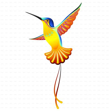 hummingbird exotic designs by bluedarkat graphicriver