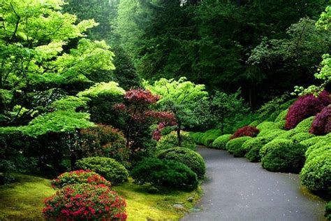japanese garden portland oregon travel pinterest