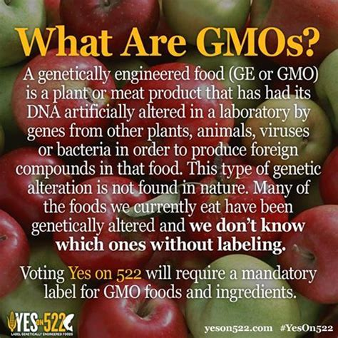 confused yes on 522 gmo food labeling or no wa voters will decide nov 5th figswithbri what are gmos learn more about yes on 522 here http yeson522 about faq community